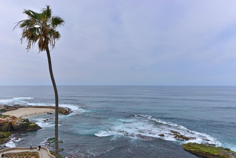 939 Coast Blvd. -  La Jolla, CA 92037