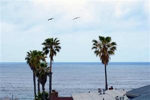 330 Playa Del Sur -  La Jolla, CA 92037