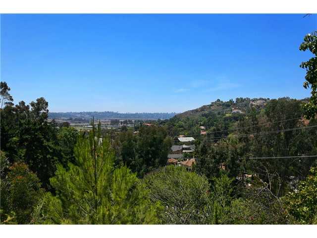15045 Rancho Real -  Del Mar, CA 92014